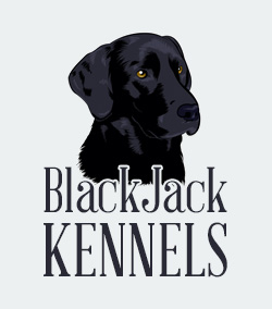 BlackJack Kennels