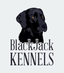 BlackJack Kennels